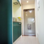 井口ビューハイツ 203号室 玄関